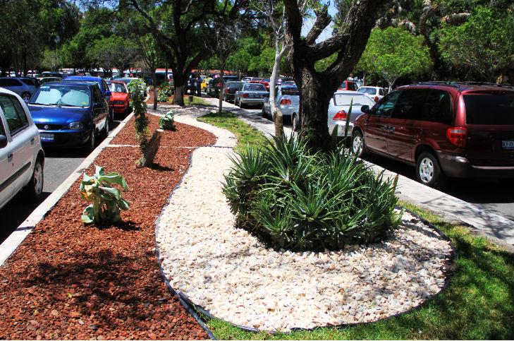 Moderniza uaq sus reas verdes y pasos peatonales for Jardineria queretaro