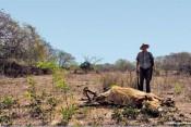 campo-mexicano-grande-