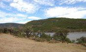 Las principales presas de Querétaro llegan a 91% de almacenamiento